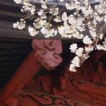 第66回全国仏壇仏具振興会総合展示見本市