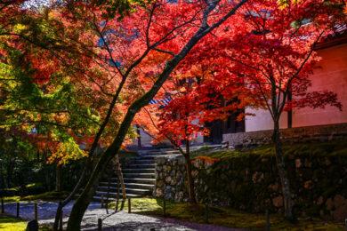 第67回全国仏壇仏具総合見本市 2021年秋季京都見本市開催のお知らせ